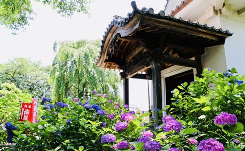 熊谷市の名所
